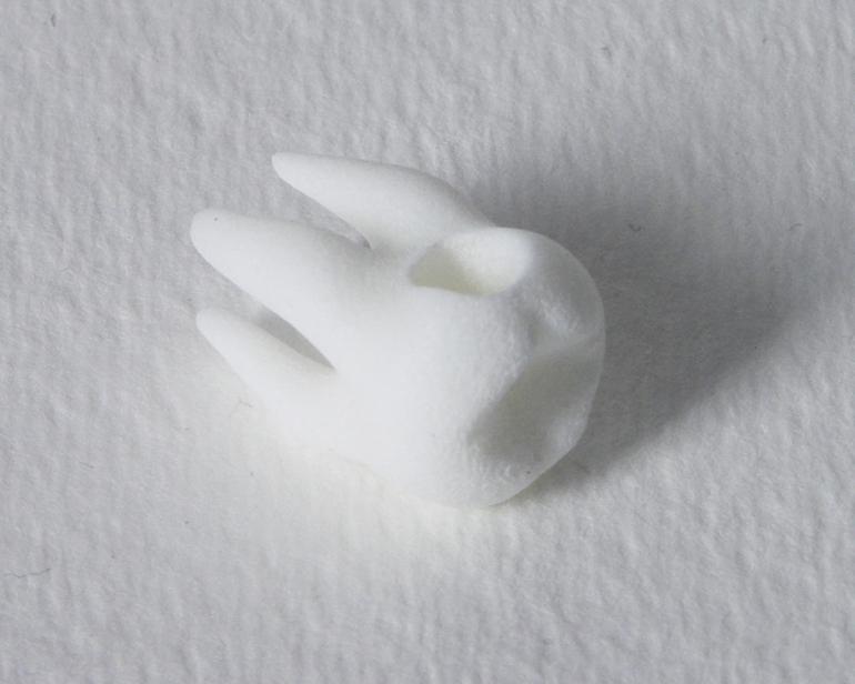 Tooth Charm / Pendant